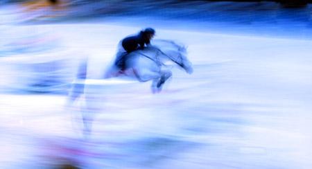 cavallo-pedica1