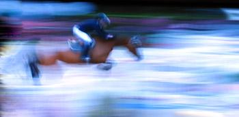 cavallo-pedica2